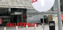 Gallery Gala Dinner